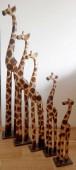 girafe-SB023