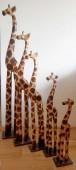 girafe-SB021