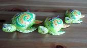 tortues-eau-SB040