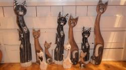 chats bois noir marron blanc